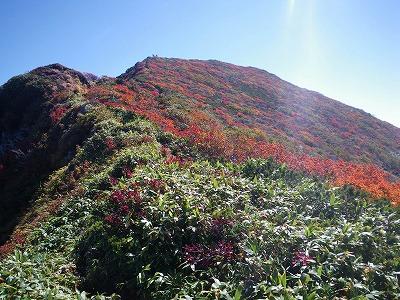 真っ赤な山頂