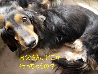 001_20130224173552.jpg