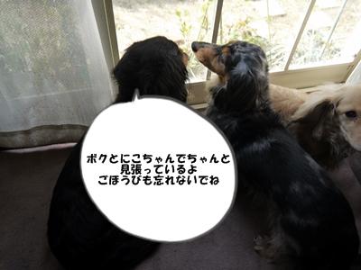 009_20130317160155.jpg