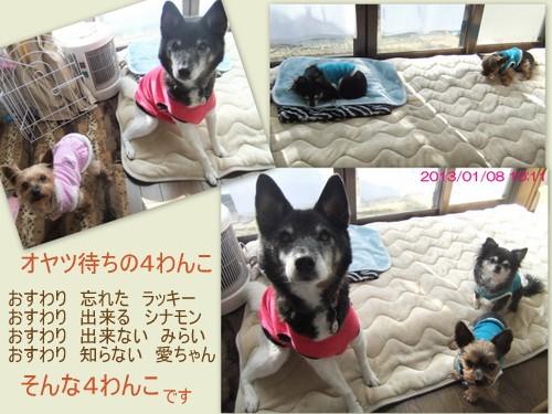 2013_0108寒いね4