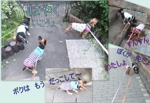 2013_0809散歩2