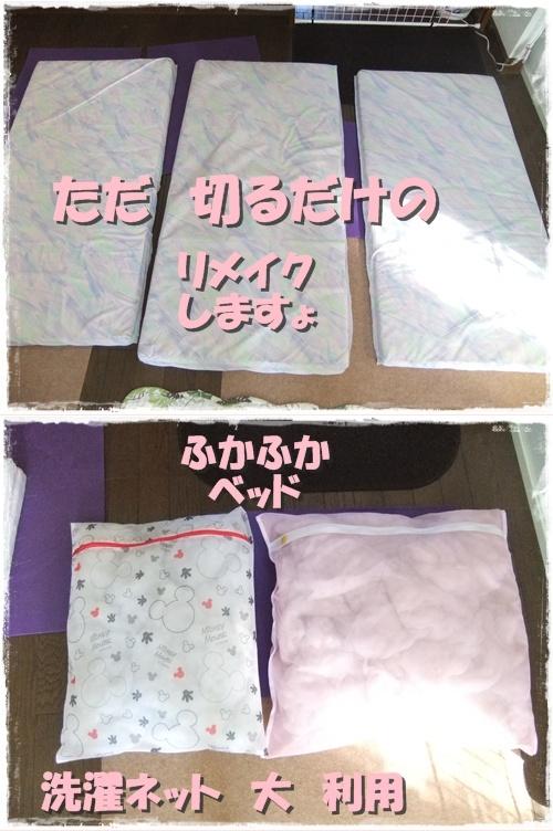 2013_0928わんこルーム0001-vert