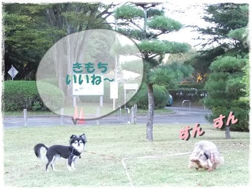 2013_0929公園0001