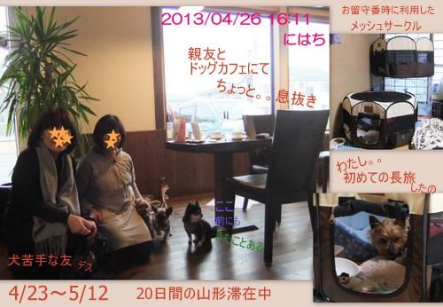 2013_0511yamagata.jpg