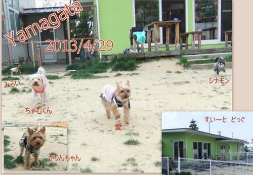 2013_0511yamagata1.jpg