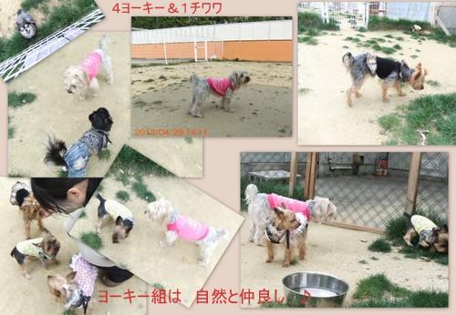 2013_0511yamagata2.jpg