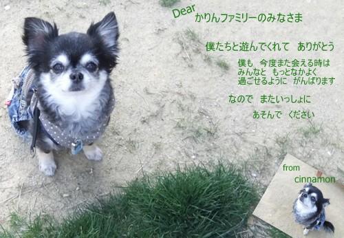2013_0511yamagata9.jpg