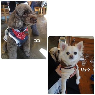 1-22-24.jpg