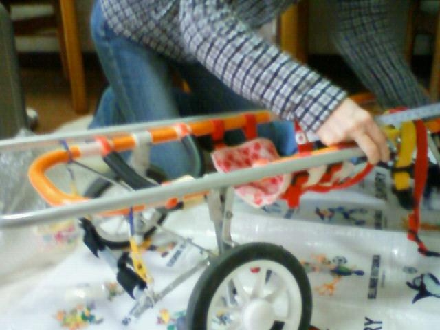 車椅子マイスター