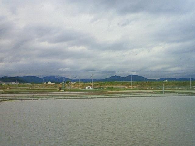 田んぼの朝景色