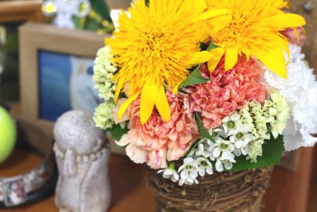 ファンチャのお花