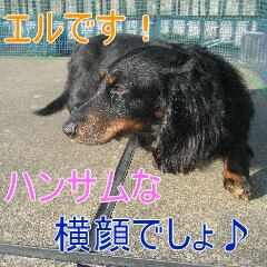 1_20100603151500.jpg