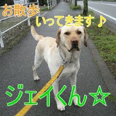 1_20100603151757.jpg