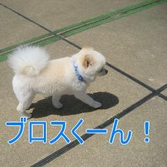 1_20100714152129.jpg
