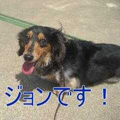 1_20100716152736.jpg