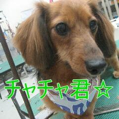 1_20100905164429.jpg