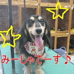 1_20100916162036.jpg
