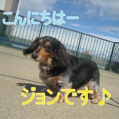 1_20101005155351.jpg