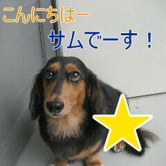 1_20101022151920.jpg