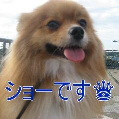1_20101119162615.jpg