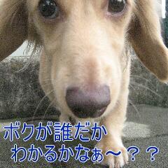 1_20101130132212.jpg