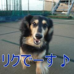 1_20101214164639.jpg