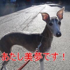 1_20110110172750.jpg