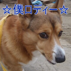 1_20110126153857.jpg