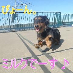 1_20110128111008.jpg