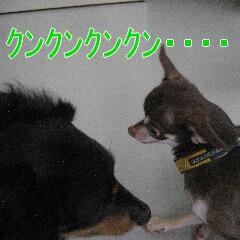 IMG_9022あ