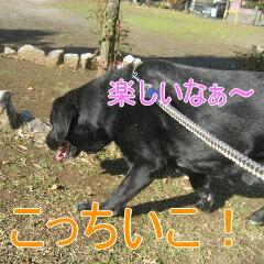 IMG_9512あ