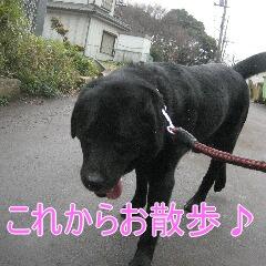 2_20100324184535.jpg