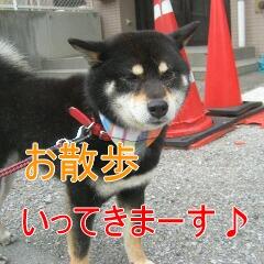 2_20100713184501.jpg