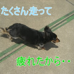 2_20100716152736.jpg