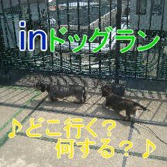 2_20100904183335.jpg