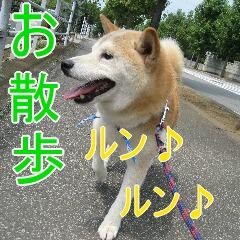 2_20100904185223.jpg