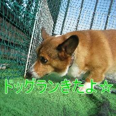 2_20100905163620.jpg