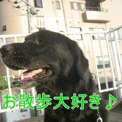 2_20100905170053.jpg