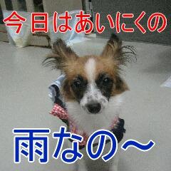 2_20100918194851.jpg