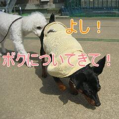 2_20101005155640.jpg