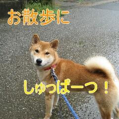 2_20101019165748.jpg