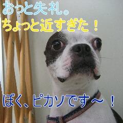2_20101022152230.jpg