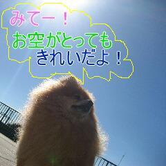 2_20101104151620.jpg