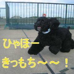 2_20101119161044.jpg