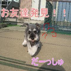 2_20101202164554.jpg