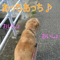 2_20110107145926.jpg