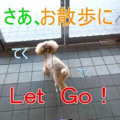 2_20110107150229.jpg