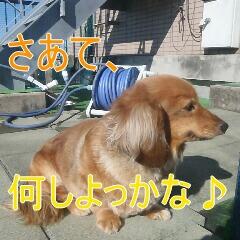 2_20110107150436.jpg