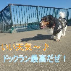 2_20110108153702.jpg