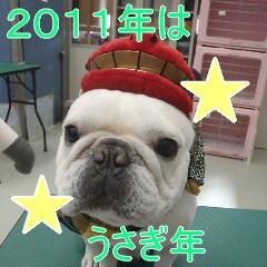 2_20110110171339.jpg